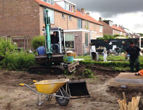 Proces výsadby hotových živých plotů