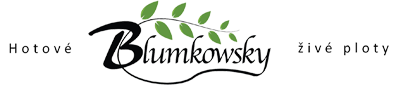 Blumkowsky Logo